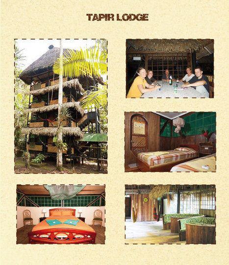 Amazon Rainforest Tours   Tapir Lodge   Ecuador Jungle   Travel Exotics of the world   Scoop.it