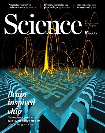 A million spiking-neuron integrated circuit with a scalable communication network and interface | Biobit: Computational Neuroscience & Biocomputation | Scoop.it