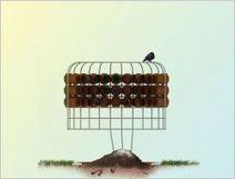 De la fiente de pigeon pour verdir les villes | Immobilier | Scoop.it
