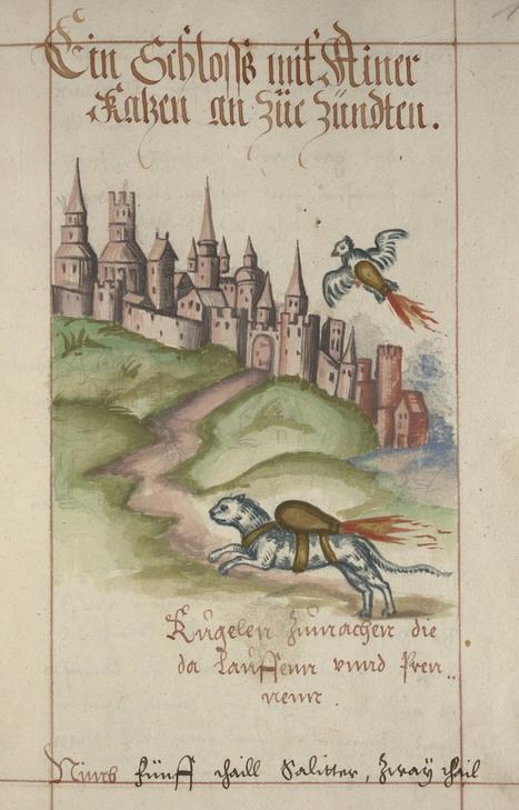 Objects of Intrigue: 16th Century Rocket Cats | EM 351 Understanding Terrorism | Scoop.it