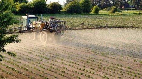 Des pesticides dangereux demeurent dans nos sols malgré les interdictions | Toxique, soyons vigilant ! | Scoop.it
