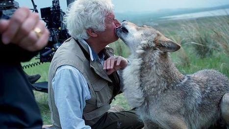 Un film français bat des records d'entrées en Chine | Nath SCOOP IT | Scoop.it