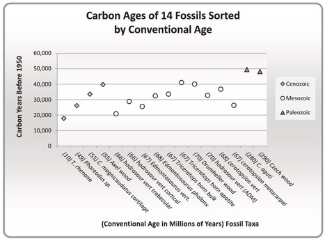 Carbon-14 Found in Dinosaur Bone | Conformable Contacts | Scoop.it