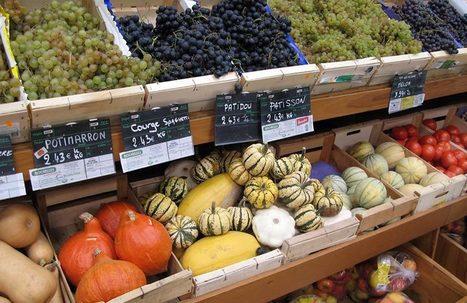 Comment détecter si des fruits et légumes sont vraiment bio ? - notre-planete.info | La santé autrement et naturellement | Scoop.it