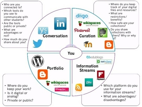 Diagram of a PLN by Joyce Seitzinger. | Skills and Literacies for Learning in a Digital and Connected World | Scoop.it