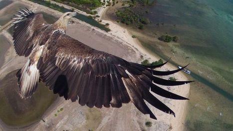Le tour du monde en drones - Le Figaro   Drone et prises de vues aériennes   Scoop.it