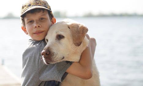 Manual de educación y adiestramiento de perros de terapia - Autismo Diario | INCLUSION - | Scoop.it