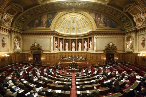 Revenu de base : le rapport du Sénat marque une nouvelle étape | Innovation sociale | Scoop.it