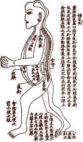Chōng meridian 衝脈 an ancient Chinese description of the vascular system?Acupuncture in Medicine | Acupuncture and the cardiovascular; circulatory system | Scoop.it