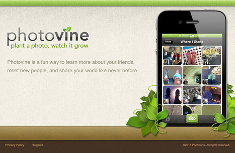 Google Photovine's Photo Sharing Website Goes Live | Everything Photographic | Scoop.it