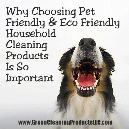 Why Choosing Pet Friendly and Eco Friendly Household Cleaning Products is so Important | midwest corridor sustainable development | Scoop.it
