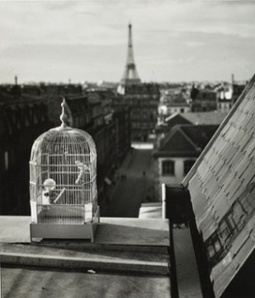 André Kertész: the photographer's photographer –in pictures | Inspirational Photography to DHP | Scoop.it