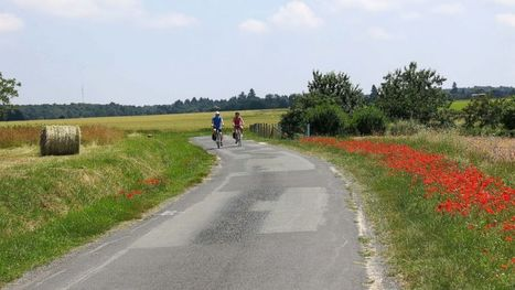 Cycling France's Loire Valley hundreds of kms of bike trails | France News | Scoop.it