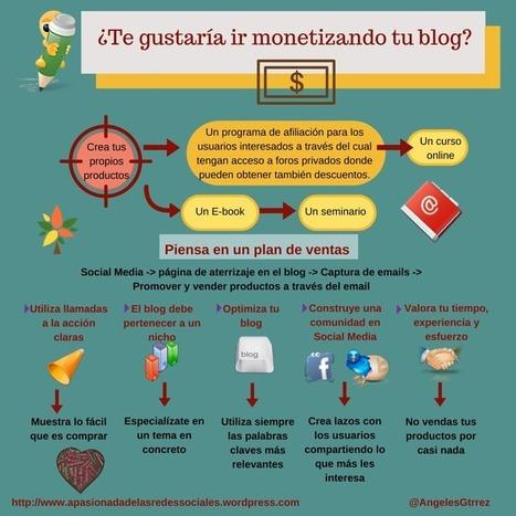 Ideas para monetizar tu blog #infografia #infographic #socialmedia | COMUNICACIONES DIGITALES | Scoop.it