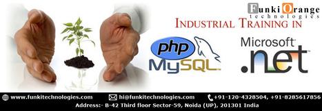 Industrial Training for Engineering Graduates in Delhi NCR - Noida industrial training | Mobile Apps Development | Scoop.it