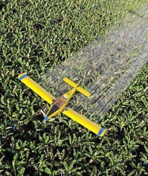 Vinculan el desarrollo del párkinson con la exposición a pesticidas | Pharmacology Research&Regulation | Scoop.it