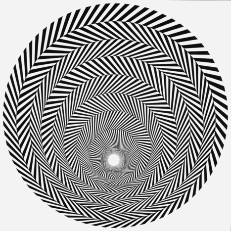 THE OPTICAL ILLUSIONS OF BRIDGET RILEY | The brain and illusions | Scoop.it
