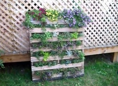 How to make a vertical pallet garden | Let's Upcycle! | Scoop.it