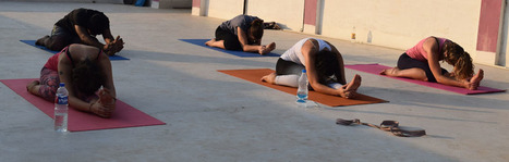 300 Hrs Yoga Therapy Ttc Course in Goa, India | School of Holistic Yoga and Ayurveda Goa | Scoop.it