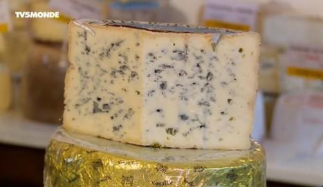 Le Bleu d'Auvergne | thevoiceofcheese | Scoop.it