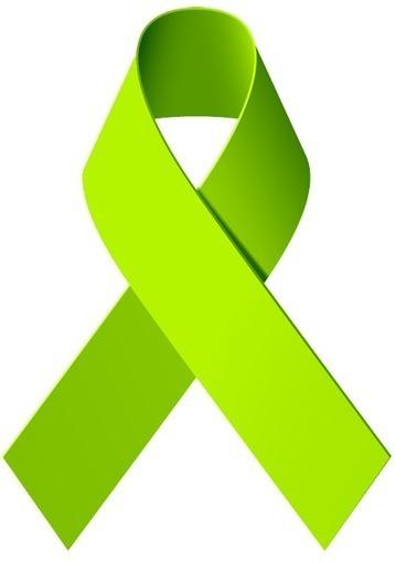 My website | Lyme Disease Perspectives | Scoop.it