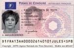 Le permis de conduire électronique retardé au 16 septembre | Libertés Numériques | Scoop.it
