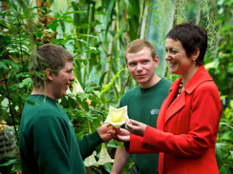 Engage for Education » Archive » Scottish Apprenticeship Week 2012 | Business Scotland | Scoop.it