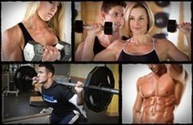 Visual Impact Muscle Building Review | How Visual Impact Muscle Building Helps People Build up Muscle Effectively - Vinaf.com | Visual Impact Muscle Building Review | Scoop.it