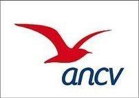 Veille info tourisme - ANCV: e-Chèque-Vacances, un nouvel atout pour les professionnels du tourisme et des loisirs !   Tourisme   Scoop.it