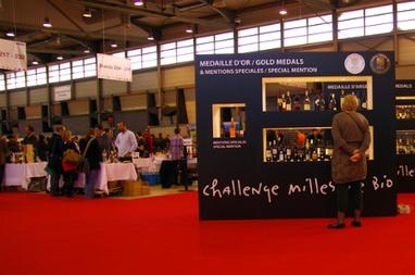 Les vins bio ont la cote | Autour du vin | Scoop.it