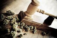 Congressional Hearing on Marijuana Legalization Today | NORML Blog, Marijuana Law Reform | California - Medical Marijuana | Scoop.it