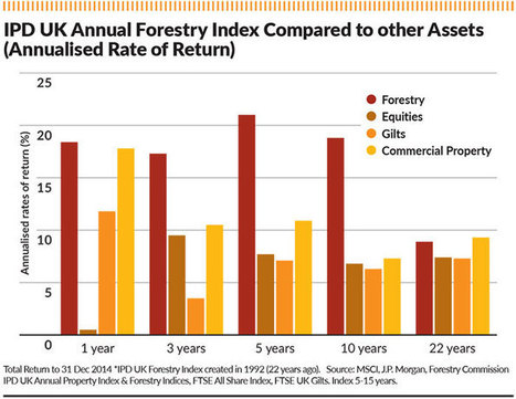 Booming timber trade boosts forestry returns | Timberland Investment | Scoop.it