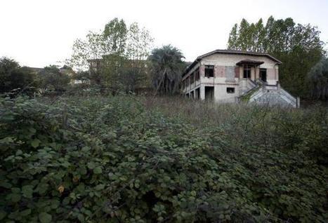 El gobierno proyecta dos huertos urbanos - La Nueva España   Ecología Urbana   Scoop.it