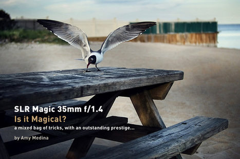 SLR Magic 35mm f/1.4: Is it Magical? a mixed bag of tricks, with an ...   SLR Magic Hyperprime Lenses   Scoop.it