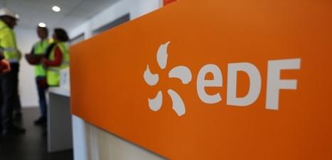 Pourquoi l'État vole au secours d'EDF et du nucléaire | great buzzness | Scoop.it