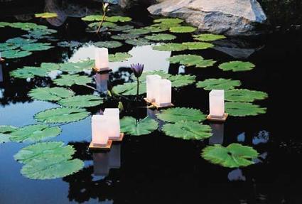 Japanese Lantern Lighting Festival to be held again at Como Park - Pioneer Press | Lighting Design | Scoop.it