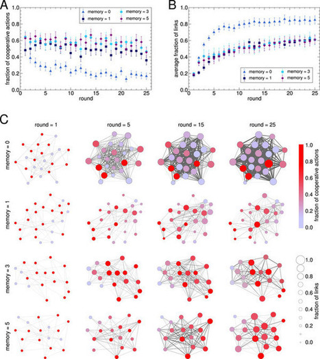 Reputation drives cooperative behaviour and network formation in human groups | Sistemas complejos | Scoop.it