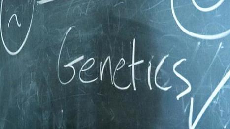 Os dinamarqueses são mais felizes por causa da genética? | Ecologia e cultura | Scoop.it