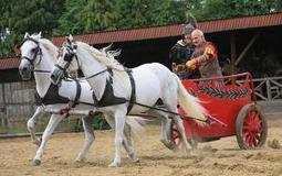 ¿Qué tienen que ver los romanos, el trasero de los caballos y los trenes? | Mundo Clásico | Scoop.it