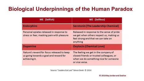 """The Paradox of Being Human"" and Its Implications in Organisations 