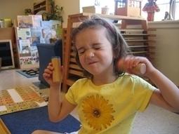 Montessori Learning Materials | American Montessori Society | Preschool Montessori Education | Scoop.it