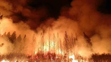 Western forest fires doubled by climate change in last 30 years | The EcoPlum Daily | Scoop.it