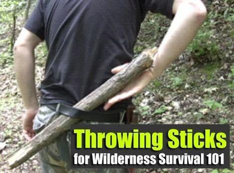Throwing Sticks for Wilderness Survival 101 - SHTF Preparedness   ApocalypseSurvival   Scoop.it