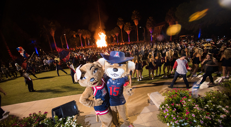 Thousands of Wildcats Ready to Party at Homecoming Festivities | UANews | CALS in the News | Scoop.it