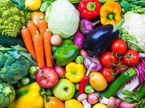Where vegetarianism and veganism differ: a diet versus a lifestyle   Nutrition Today   Scoop.it