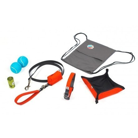 Wildebeest Dog Starter Kit For New Pet Owners | All About Pet Accesories | Scoop.it