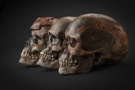 Game of bones: first Europeans' shifting fortunes found in DNA | Geology | Scoop.it