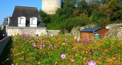 Un labyrinthe pédagogique s'est ouvert au château - 16/09/2014, Château-Renault (37) - La Nouvelle République | Labyrinthes pédagogiques | Scoop.it
