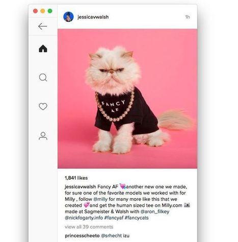 Ramme : le meilleur client Instagram pour desktop | Outils Community Manager | Scoop.it