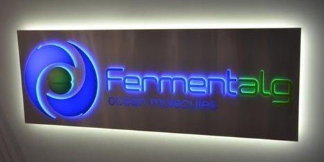 Qui est le nouveau PDG de Fermentalg ? | La santé et biotechnologies à Bordeaux et en Gironde | Scoop.it